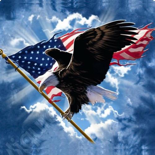 Flag Eagle 2